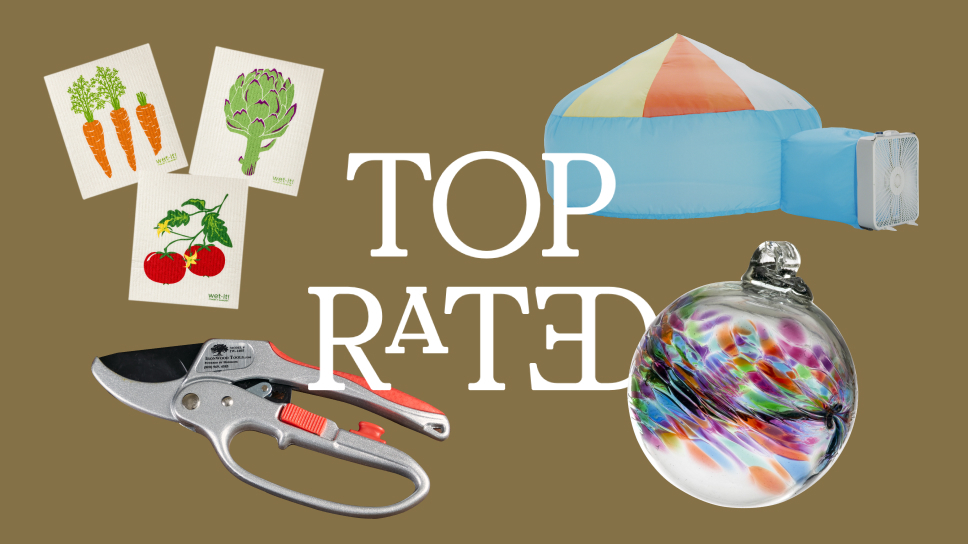 """Text """"Top Rated"""" surrounded by four products on brown background"""