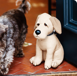 A whimsical labrador doorstop holds open a door for a real puppy.