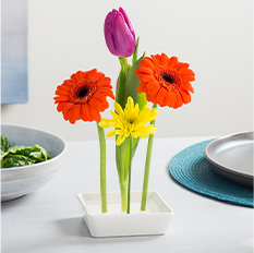 Floating Flower Pin Vase
