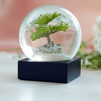 A bonsai tree glistens in a contemporary snow globe.